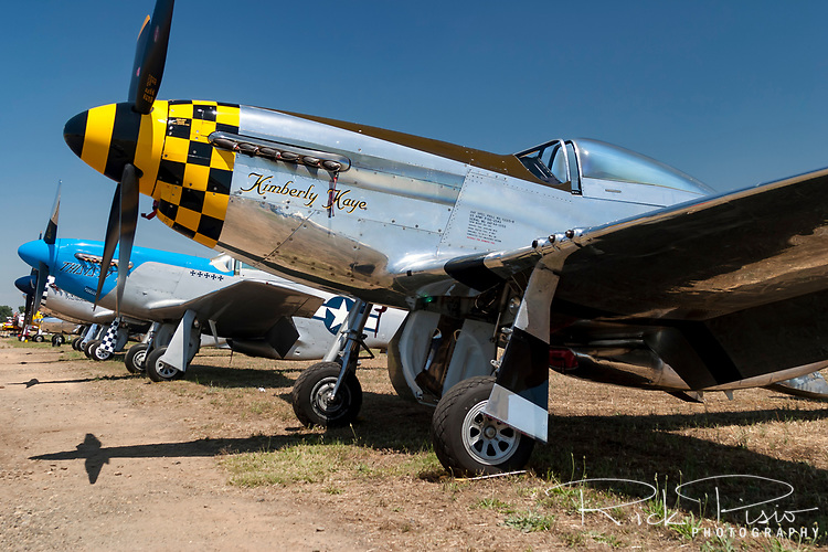 "The highly polished P-51D Mustang ""Kimberly Kaye"" sits in the California sun during a fly-in at the Marysville Airport in 1985. The P-51 Mustang is considered to be the premier fighter of the World War II and many are kept in flying condition by their civilian owners."