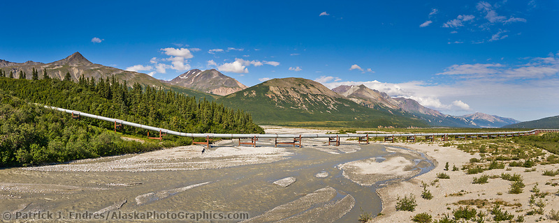 Panorama of the Trans Alaska Oil Pipeline crossing Little Miller creek in the Alaska Range mountains, Interior, Alaska.