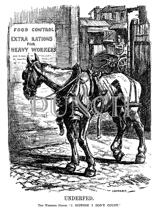 """Underfed. The Working Horse. """"I suppose I don't count."""" (a boney horse looks at the poster FOOD CONTROL - EXTRA RATIONS For HEAVY WORKERS during WW1)"""