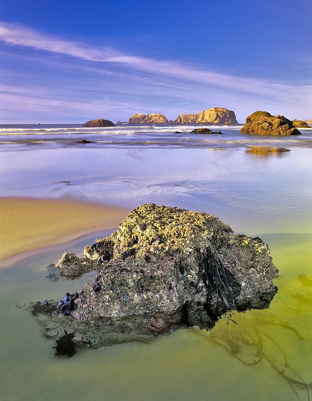 Low tide  pools at Bandon Beach, Oregon