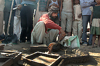 A snake charmer at Sonepur fair ground. Bihar, India, Arindam Mukherjee
