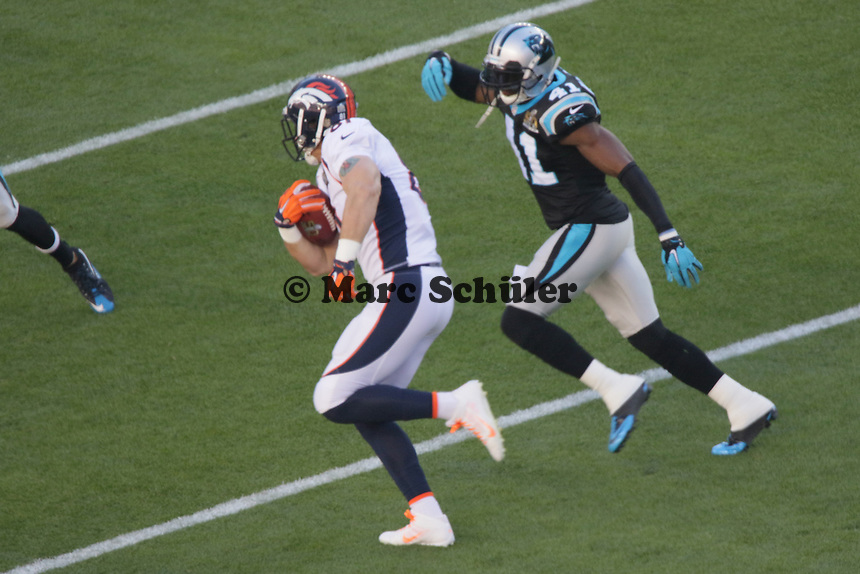 TE Owen Daniels (Broncos) - Super Bowl 50: Carolina Panthers vs. Denver Broncos