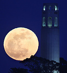 The month of May's super full moon rose next to San Francisco Coit Tower on Saturday, May 5, 2012.