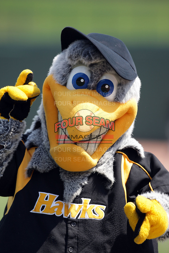 August 9, 2009: Mascot for the South Bend Silver Hawks at Covelski Stadium in South Bend, IN. The Silver Hawks are the Low class affiliate of the Arizona Diamondbacks  Photo by: Chris Proctor/Four Seam Images