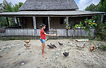 Dyan Lima da Silva feed chickens at her home in the countryside near Anapu, in Brazil's northern Para State. This area was forest land until recent decades, when the expansion of the agrarian frontier led to the steady destruction of this part of the Amazon's rain forest.