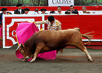 MANIZALES-COLOMBIA. 06-01-2016: Sebastian Ritter lidiando a Gitanillo de 452kg de la ganadería Dos Gutierrez durante la tercera corrida como parte de la versión número 60 de La Feria de Manizales 2016 que se lleva a cabo entre el 2 y el 10 de enero de 2016 en la ciudad de Manizales, Colombia. / The bullfighter Sebastian Ritter struggling to Gitanillo of 452 kg during the third bullfight as part of the 60th version of Manizales Fair 2016 takes place between 2 and 10 January 2016 in the city of Manizales, Colombia. Photo: VizzorImage / Santiago Osorio / Cont