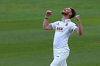 Jamie Porter of Essex celebrates taking the wicket of Lewis McManus during Essex CCC vs Hampshire CCC, Specsavers County Championship Division 1 Cricket at The Cloudfm County Ground on 21st May 2017