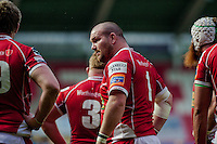 Saturday 10 May 2014<br /> Pictured: Phill John of the Scarlets <br /> Re: Scarlets v Blues Rabo Direct Pro 12 Rugby Union Match at Parc y Scarlets, Llanelli, Wales