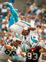 Carolina Panthers 2015-2016