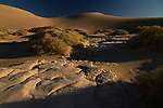 The Mesquite Sand Dunes of Death Valley, California