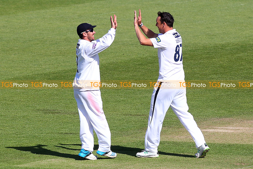 Kyle Abbott of Hampshire (R) is congratulated on the wicket of Ryan ten Doeschate by Will Smith - Hampshire CCC vs Essex CCC - LV County Championship Division Two Cricket at the Ageas Bowl, West End, Southampton - 17/06/14 - MANDATORY CREDIT: Gavin Ellis/TGSPHOTO - Self billing applies where appropriate - 0845 094 6026 - contact@tgsphoto.co.uk - NO UNPAID USE