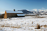 USA, Utah, Midway, a horse stands in the snow besides the Tate Barn