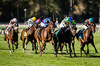 OLDSMAR, FL - MARCH 11: Fifty Five #6, ridden by Jose Ortiz (black hat), comes down the final stretch and wins the Florida Oaks on Tampa Bay Derby Day at the Tampa Bay Downs on  March 11, 2017 in Oldsmar, Florida. (Photo by Douglas DeFelice/Eclipse Sportswire/Getty Images)