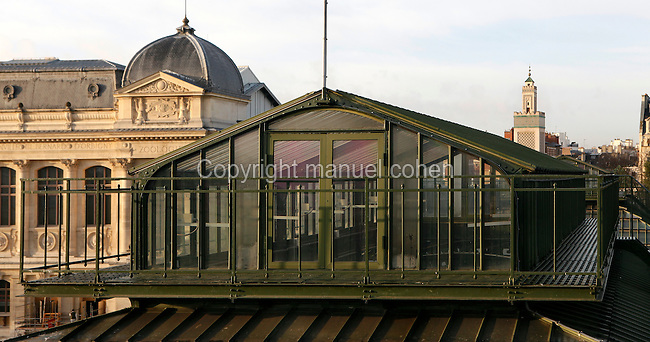 New Caledonia Glasshouse (formerly The Mexican Hothouse), 1830s, Charles Rohault de Fleury, Jardin des Plantes, Museum National d'Histoire Naturelle, Paris, France. Detail showing the glass and metal structures of the roof and walkway around it. To the left is the Grand Gallery of Evolution, and in the background is the minaret of the Grande Mosquee de Paris (Great Mosque of Paris). The New Caledonia Glasshouse, or Hothouse, was the first French glass and iron building.