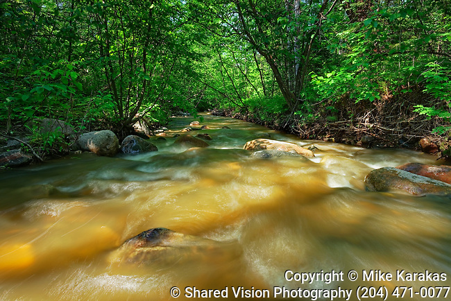 Stream at Base of Bald Hill Hiking Trail, Riding Mountain National Park