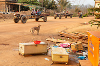 Tractors drive through the village of Souch, near the Phnom Tnout Phnom Pok Wildlife Sanctuary, in northern Cambodia.
