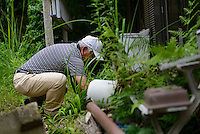 A former resident tending to the garden of his abandoned home. Namie, Fukushima Prefecture, Japan, August 2, 2013. The town of Namie was evacuated following the nuclear accident of March 2011. Residents can only return for short periods to tend to their former homes and pick up belongings, and are not permitted to stay overnight.