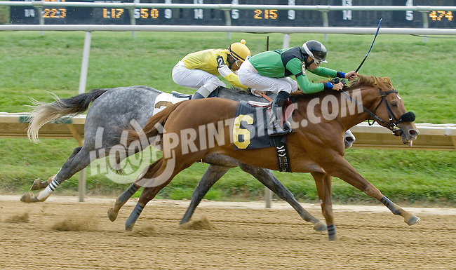 Dublin Da'bet winning at Delaware Park on 10/27/12.1700th Career win for Daniel Centeno.