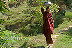 Water systems throughout the mountains of Pakistan were damaged and destroyed during the October 2005 quake, but aid groups have been actively restoring water systems so that earthquake survivors, like Hafeeza, a 17-year old in the village of Potha, where Norwegian Church Aid rebuilt the water system, can have access to the the life-giving liquid. The quake measured 7.6 on the Richter scale and killed more than 74,000 people in northern Pakistan.
