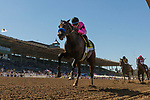 September 29 2018 : Game Winner with Joel Rosario up wins The American Pharoah Stakes on Breeders Cup Preview Day at Santa Anita Park on September 29, 2018 in Arcadia, California. Evers/ESW/CSM
