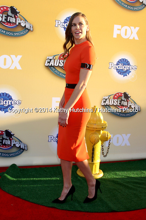 """LOS ANGELES - NOV 22:  Hilary Swank at the FOX's """"Cause for Paws:  All-Star Dog Spectacular"""" at the Barker Hanger on November 22, 2014 in Santa Monica, CA"""