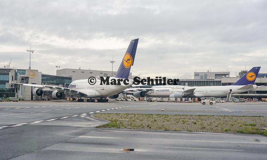A380 und Boeing 747 Maschinen der Lufthansa am Frankfurter Flughafen - Frankfurt 16.10.2019: Eichwaldschule Schaafheim am Frankfurter Flughafen