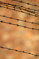 Barbed wire along the perimeter fence of the Auschwitz Nazi concentration camp. It is estimated that between 1.1 and 1.5 million Jews, Poles, gypsies and others were killed here in the Holocaust between 1940-1945.
