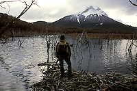 "Ranger Pablo Kunzle stands atop a beaver den in a pond along the Río Pipo in Tierra del Fuego National Park. Dead beech trees stand in the flood water. ""Every change is good for some and bad for others,"" he muses. ""The ducks that need clear, rapid-running water are suffering. It's good for those ducks that eat algae from dark, still water. They (the beavers) changed the oxygen level of the rivers."""