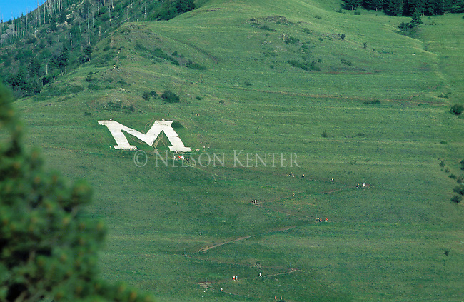 The M trail on Mount Sentinel in early summer greenery in Missoula, Montana
