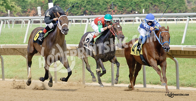 Herman's Wildcat winning The Christiana Stakes at Delaware Park on 7/9/14