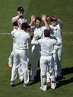 Colin de Grandhomme celebrates dismissing Faf du Plessis on day two of the first test between the New Zealand Black Caps and South Africa Proteas at Hawkins Basin Reserve in Wellington, New Zealand on Friday, 17 March 2017. Photo: Dave Lintott / lintottphoto.co.nz