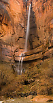 A recent rainstorm provided a good flow of water over this waterfall at the Temple of Sinawava, Zion National Park, Utah, USA, December 1, 2007.  Photo by Gus Curtis.