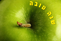 Shana Tova Greeting <br />
