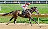 Ruby's Escapade winning at Delaware Park on 9/4/14