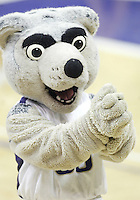 28 December 2008:  Washington Huskies mascot Harry entertained the crowed in attendance against Montana at the Bank of America Arena at Hec Edmundson Pavilion in Seattle, WA.  Washington won 75-53 over Montana.