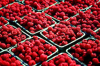 Boxes of fresh raspberries