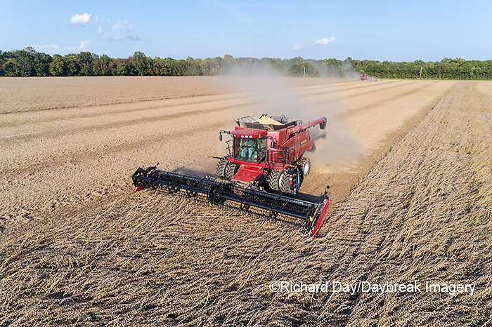63801-13411 Harvesting soybeans in fall-aerial  Marion Co. IL