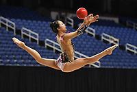 2018 USA Gymnastics Championships Greensboro