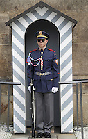 Guard wearing sunglasses standing guard outside Prague Castle<br /> <br /> The Castle Guard is a Brigade-equivalent military unit with total strength of 653 personnel, including 81 commissioned officers, 75 senior non-commissioned officers, 377 junior non-commissioned officers, 77 enlisted personnel and 43 civilian employees.<br /> Command and Staff<br /> The Castle Guard command is a body to provide direct command and control of units, branches and sections, and to coordinate and manage their interactive operation. Its further responsibilities include public diplomacy, personnel management, financial and legal issues for all Castle Guard units and components.<br /> The staff provides a comprehensive support to day-to-day operations by individual Castle Guard structures through the Operations Department and the Support Department.<br /> <br /> The mission of guard companies of the 1st and 2nd Battalion is to perform external security duties at the Prague Castle compound, the L&aacute;ny Chateau and other facilities used by the President and his guests for temporary residence, and to provide their defence in crisis. In addition to that, their mission is to perform parade and protocol related activities.
