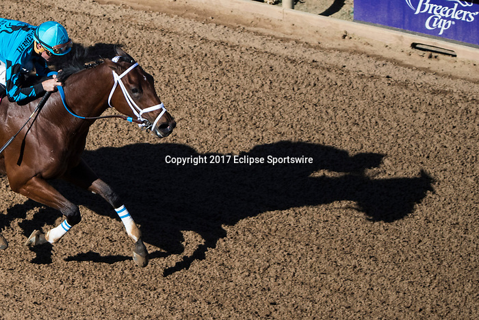 DEL MAR, CA - NOVEMBER 04: The shadow of Roy H #8, ridden by Kent J. Desormeaux, while he takes on the home stretch on Day 2 of the 2017 Breeders' Cup World Championships at Del Mar Thoroughbred Club on November 4, 2017 in Del Mar, California. (Photo by Ting Shen/Eclipse Sportswire/Breeders Cup)
