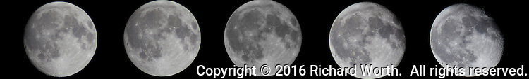 Images from the two days before and the two days after straddle the September 2016 Full Harvest Moon.