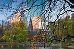 Fall foliage in Boston Public Garden, Boston, MA, USA