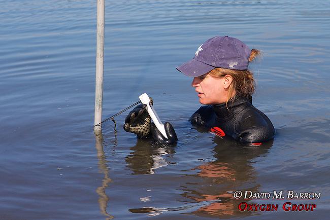 Melissa Miller Reading Water Temperature