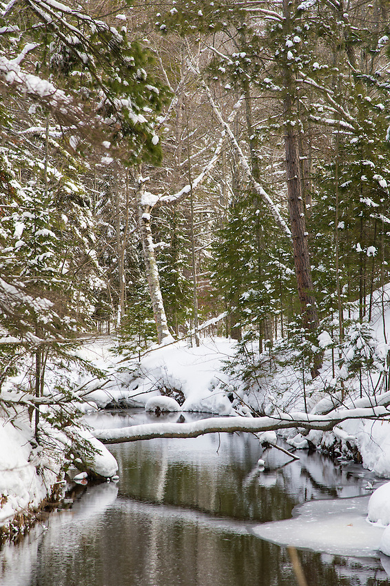 Harlow Creek in winter near Marquette, MIchigan.