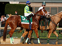 "October 07, 2018 : #5 Southernperfection and jockey Albin Jimenez in the 63rd running of The Juddmonte Spinster (Grade 1) $500,000 ""Win and You're In Breeders' Cup Distaff Division"" at Keeneland Race Course on October 07, 2018 in Lexington, KY.  Candice Chavez/ESW/CSM"