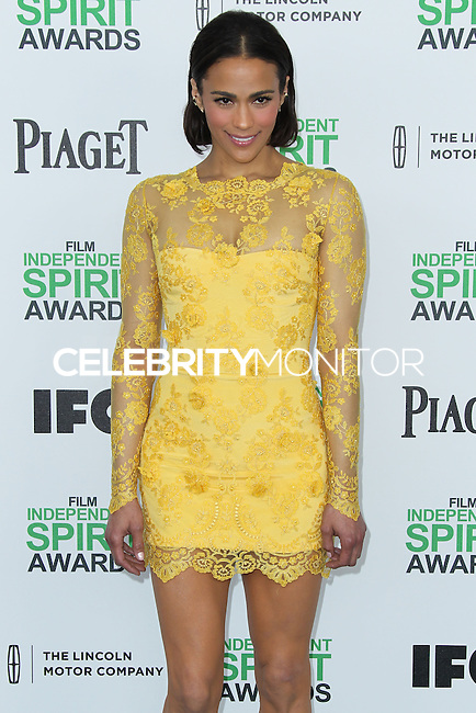 SANTA MONICA, CA, USA - MARCH 01: Paula Patton at the 2014 Film Independent Spirit Awards held at Santa Monica Beach on March 1, 2014 in Santa Monica, California, United States. (Photo by Xavier Collin/Celebrity Monitor)