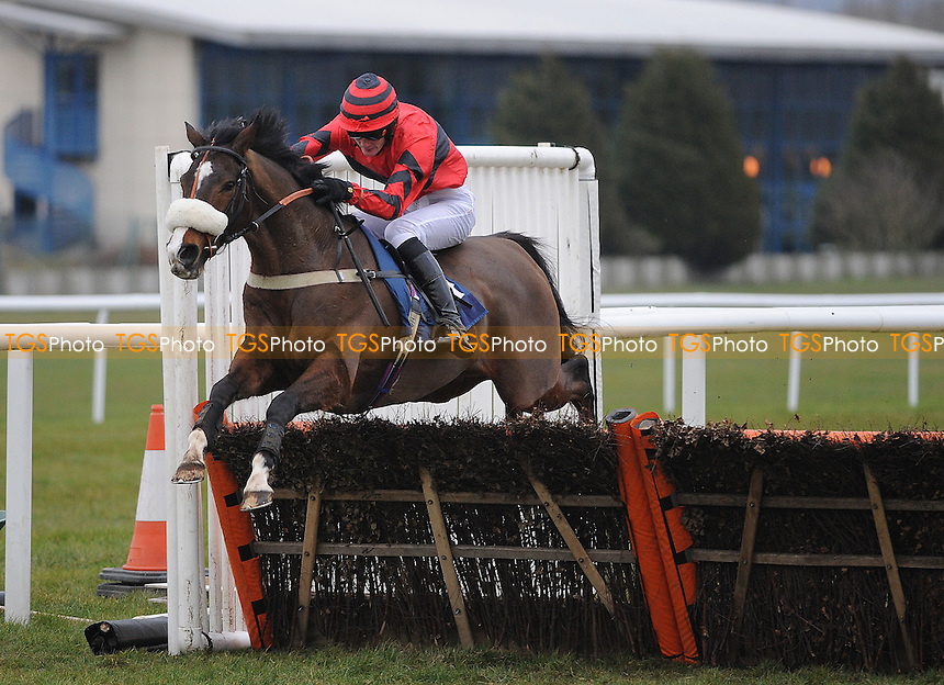Arctic Wings ridden by Josh Hamer jumps the last and goes on to win the Betfair Hurdle (Handicap) Grade 3 Cl1 - Horse Racing at Newbury Racecourse, Berkshire - 02/03/2013 - MANDATORY CREDIT: Martin Dalton/TGSPHOTO - Self billing applies where appropriate - 0845 094 6026 - contact@tgsphoto.co.uk - NO UNPAID USE.