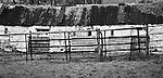 Farmhouse, Co.Kerry