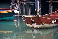 Bird on Boat, Tai O Harbour, Hong Kong, China