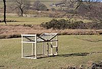 Bird trap near Marshaw, Abbeystead, Lancashire.